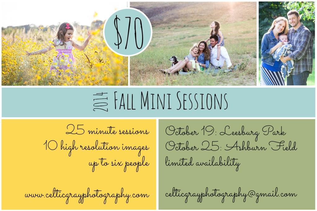 2014 Fall Mini Sessions