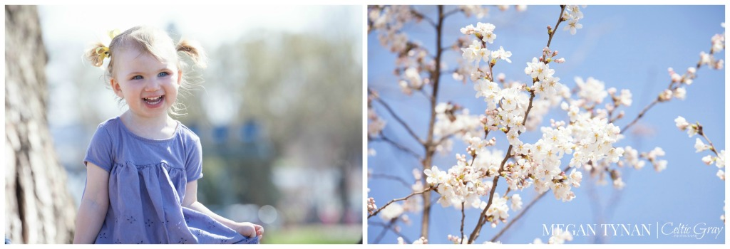 CherryBlossomBabyWM