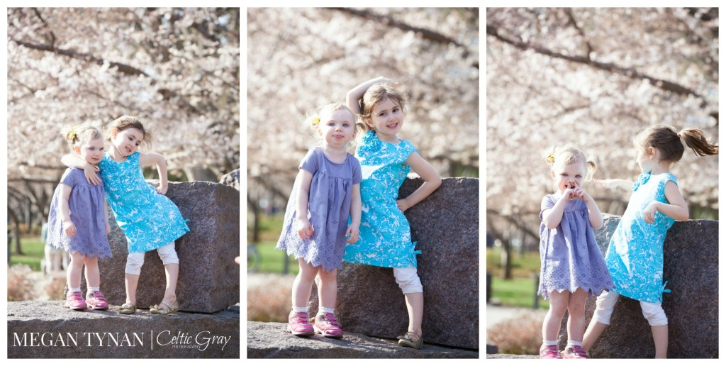 CherryBlossomsWM